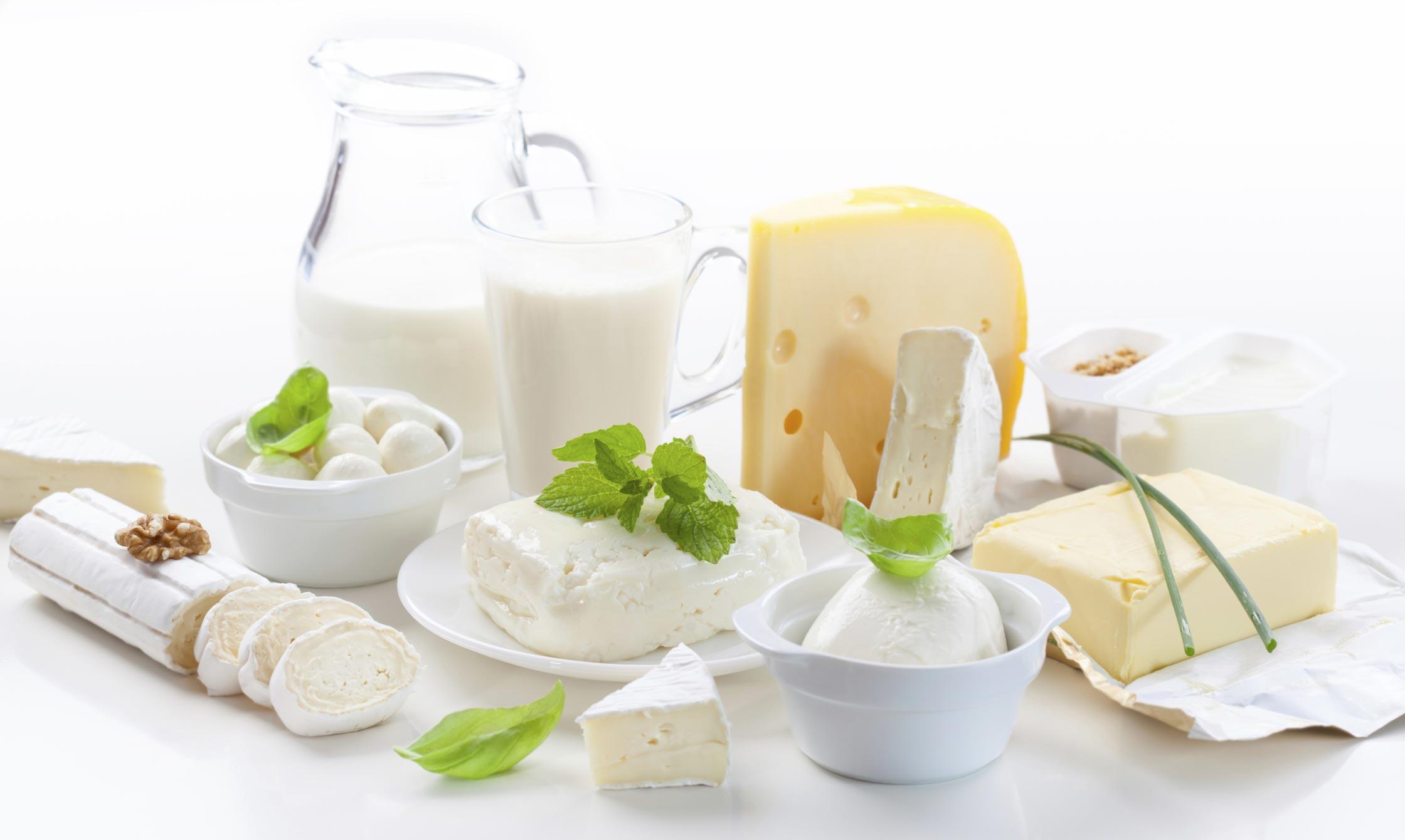 Виробництво молочної продукції